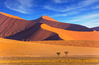The Namib-Naukluft at sunset