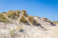 Sand dunes wadden ialsnds Netehrlands