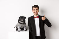Animals, party and celebration concept. Handsome young man in suit and cute black pug in costume staring at camera, owner showing thumb up in approval and praise, white background