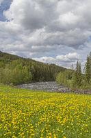 springtime in Oppland