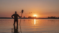 silhouette of a male stand up paddler against sunrise