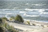 Northe Sea coast