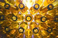 yellow glass empty beer bottles lie in rows