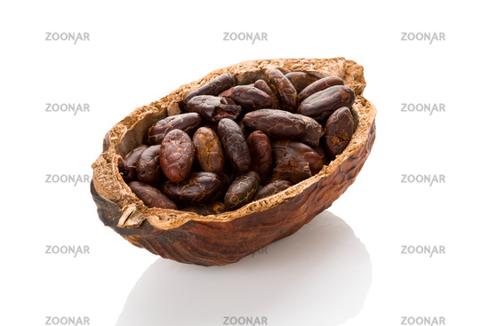 Fresh roasted cocoa beans in a cocoa pod on white background.