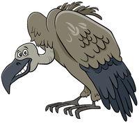 vulture bird animal cartoon character