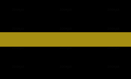 thin golden line flag