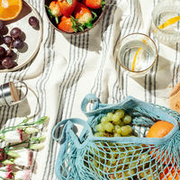 Summer picnic flatlay, fruits, berries and lemon water on striped cotton blanket