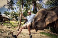 Domesticated elephant lifting a tourist with his trunk