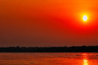 Sunset at the Nile at Murchison Falls National Park Uganda