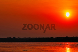 Sonnenuntergang am Nil im Murchison Falls Nationalpark Uganda | Sunset at the Nile at Murchison Falls National Park Uganda