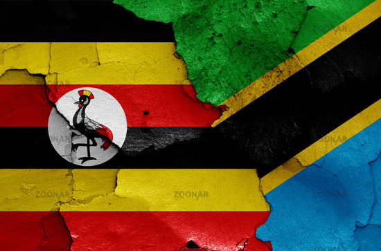 flags of Uganda and Tanzania painted on cracked wall