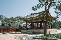 Changgyeonggung Palace Korean traditional architecture in Seoul, Korea