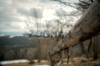 Wooden fence in the wild nature
