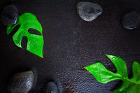 Flat lay composition with stones and monstera leaf on wet black background