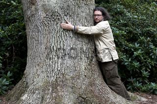 Mann und Baum