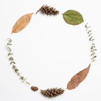 Autumn dry leaves on white background. flat lay, top view, copy space