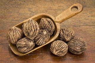 black walnuts in rustic scoop