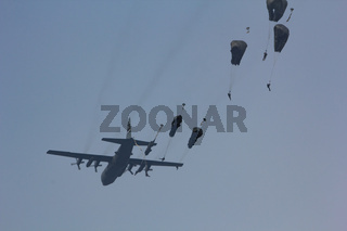 EDE, THE NETHERLANDS - SEPTEMBER 20 2014: Paratroopers jumping from a C-130 Hercules aircraft over the Ginkel Heide, during the Garden Market Memorial.