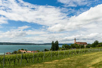 View of Lake Constance with Basilica Birnau and vineyards. Lake Constance district, Germany