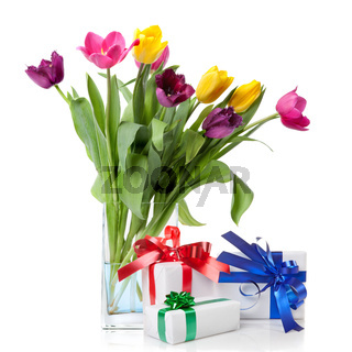 Color tulips and presents isolated on white