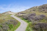 National park sand dunes Netherlands