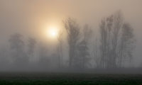 Foggy sunrise at Paar river near Schrobenhausen, Bavaria, Germany in autumn