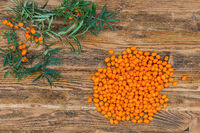 Bunch of sea buckthorn berries and branch on brown wooden background from above