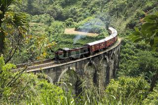Steam train in the jungle, Ella, Sri Lanka