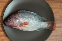 Fresh red Tilapia, known as Mojarra in Mexico