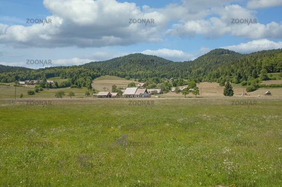 Pokljuka Plateau,Triglav National Park,Slovenia