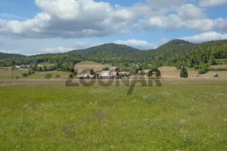 Pokljuka Plateau,Triglav National Park,Slowenien