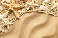 Seashells And Starfishes On Sand Background