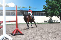 Young female jockey on horse leaping over hurdle. equestrian