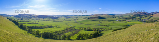 Panorama Of Summer In The Scottish Borders