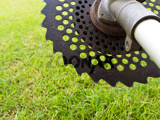 Circular saw blade of grass cutter