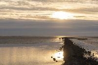 Wadden Sea bei Dorum-Neufeld