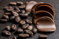 Dark chocolate chips and cocoa beans