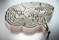 Businessman standing at the entrance of brain shaped maze 3D illustration