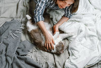 Young woman lying on a bed with her british breed cat pet, selective focus
