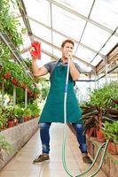 Gärtner singt in einen Schlauch im Gewächshaus