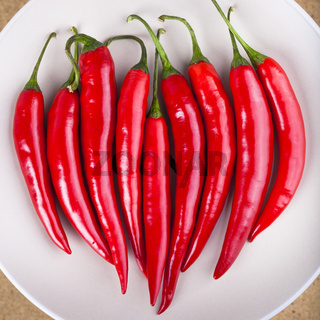 Fresh red hot chili peppers