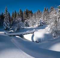 Alpine mountain snowy winter fir forest with snowdrifts and frozen small stream