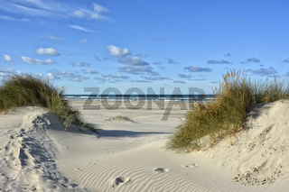 Nordsee Daenemark Jammerbucht
