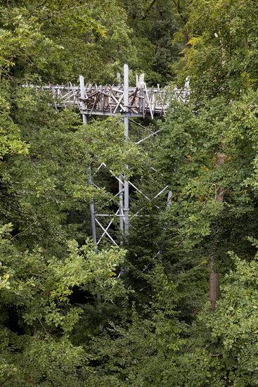 The treetop path in the spa forest, Bad Iburg, Muensterland, Lower Saxony, Germany, Europe