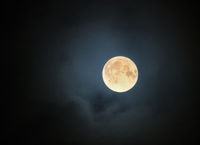 glowing full halloween november moon surrounded by illuminated clouds