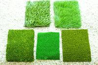 Grass samples