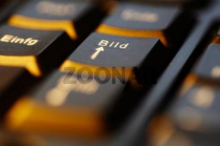 Keyboard (2).jpg