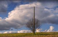 December - The pylon