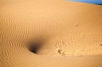 Sand Dunes Ripples