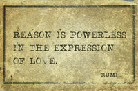 reason is Rumi